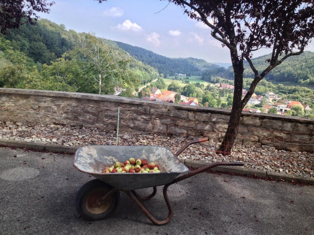 kruiwagen vol appels