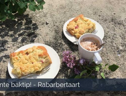 Recept rabarbertaart – Lente baktip