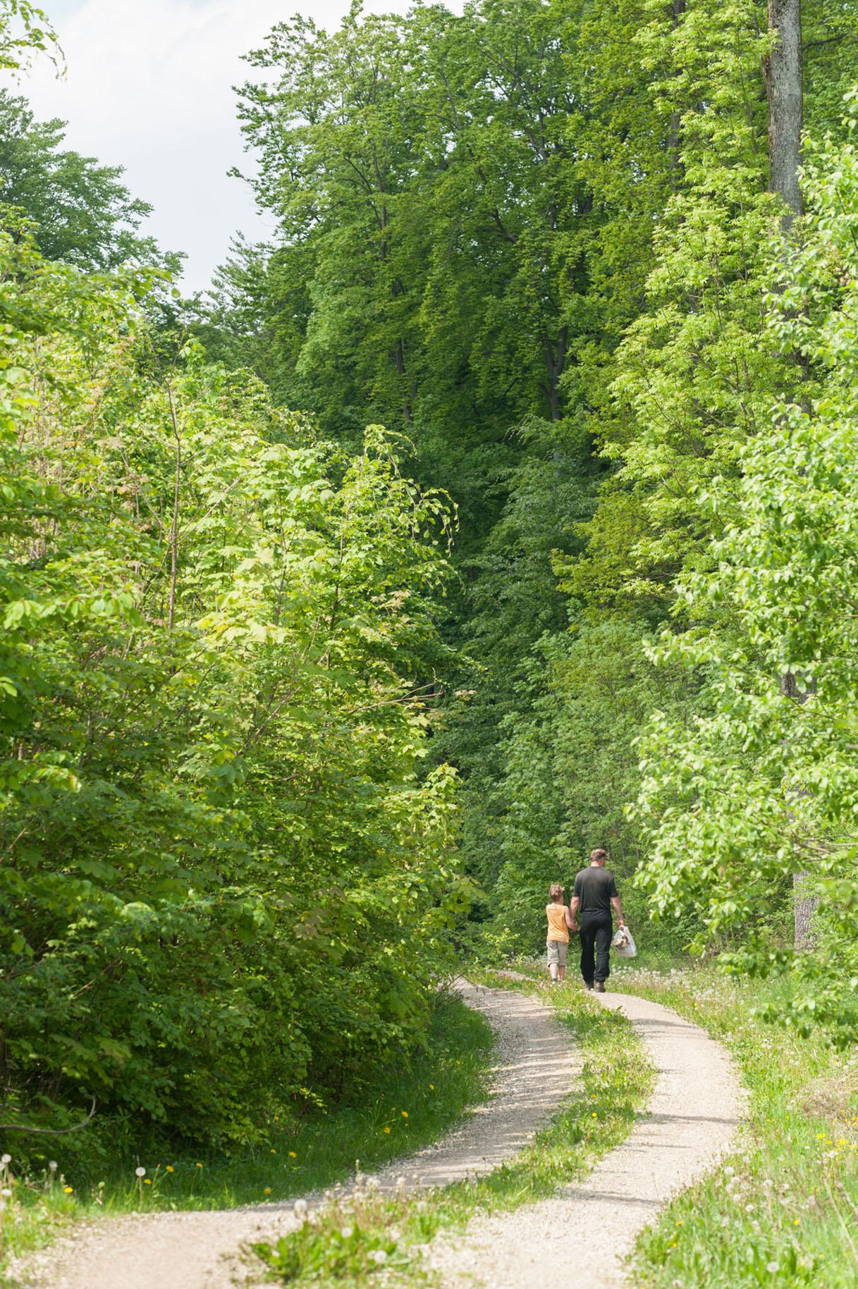 Wandelvakantie Atmuhltal Beieren Zuid-Duitsland