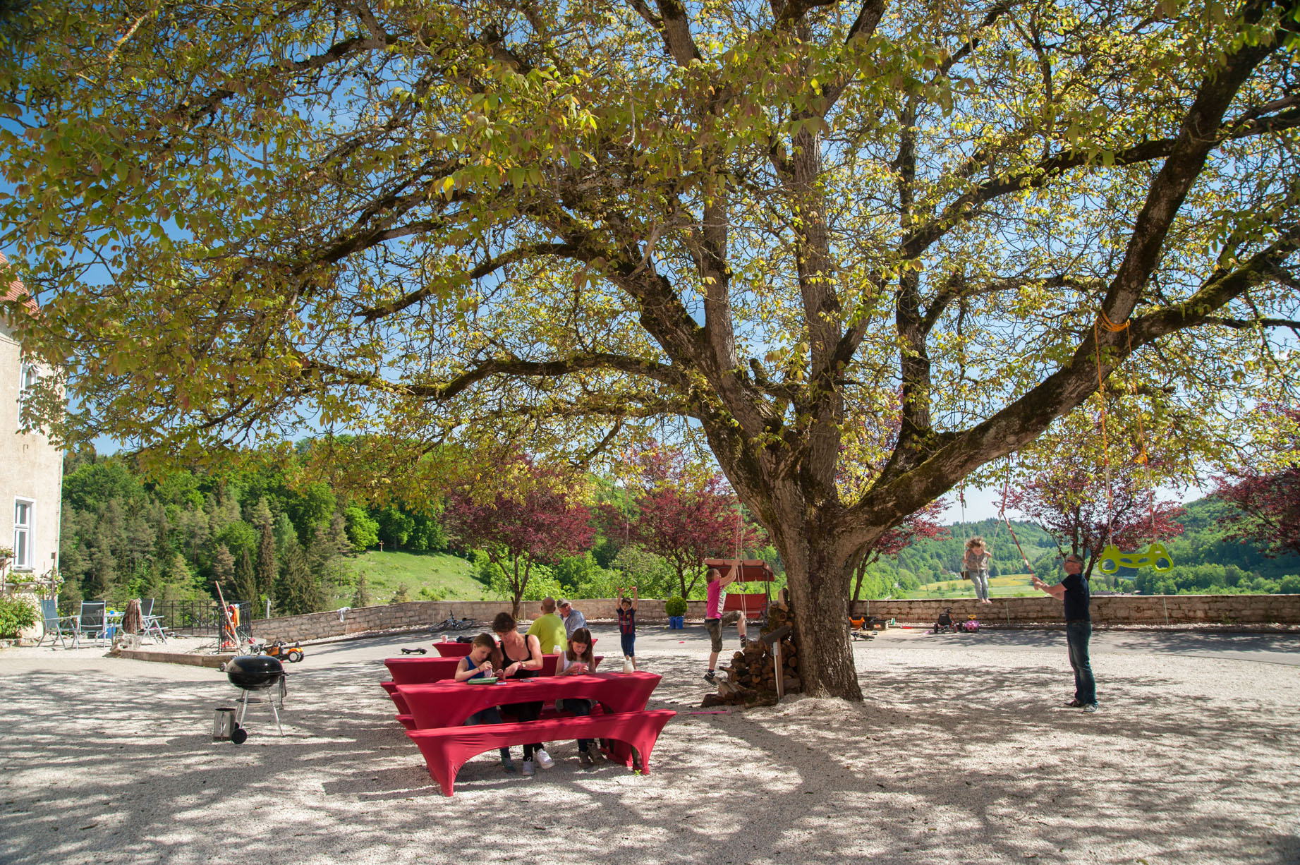 Gezamenlijke binnenplaats onder Walnotenboom landgoed Schloss Möhren