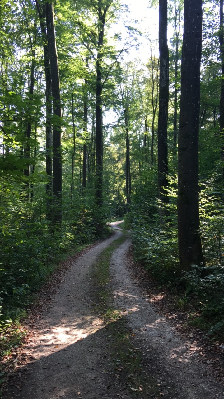 Wanderweg zum St. Uhlrich Kapelle am Uhlberg