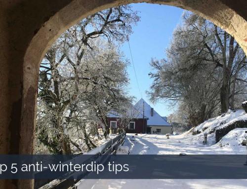 Top 5 anti-winterdip tips