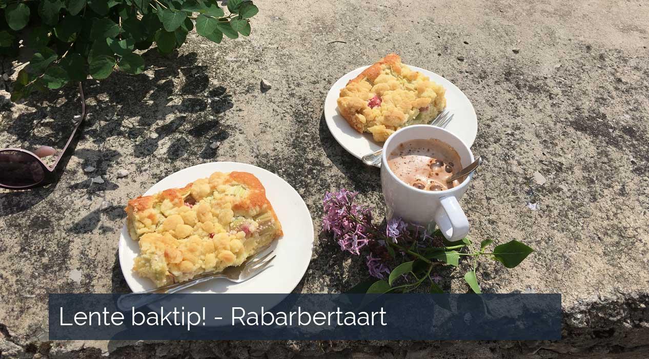 Lente baktip - Rabarbertaart