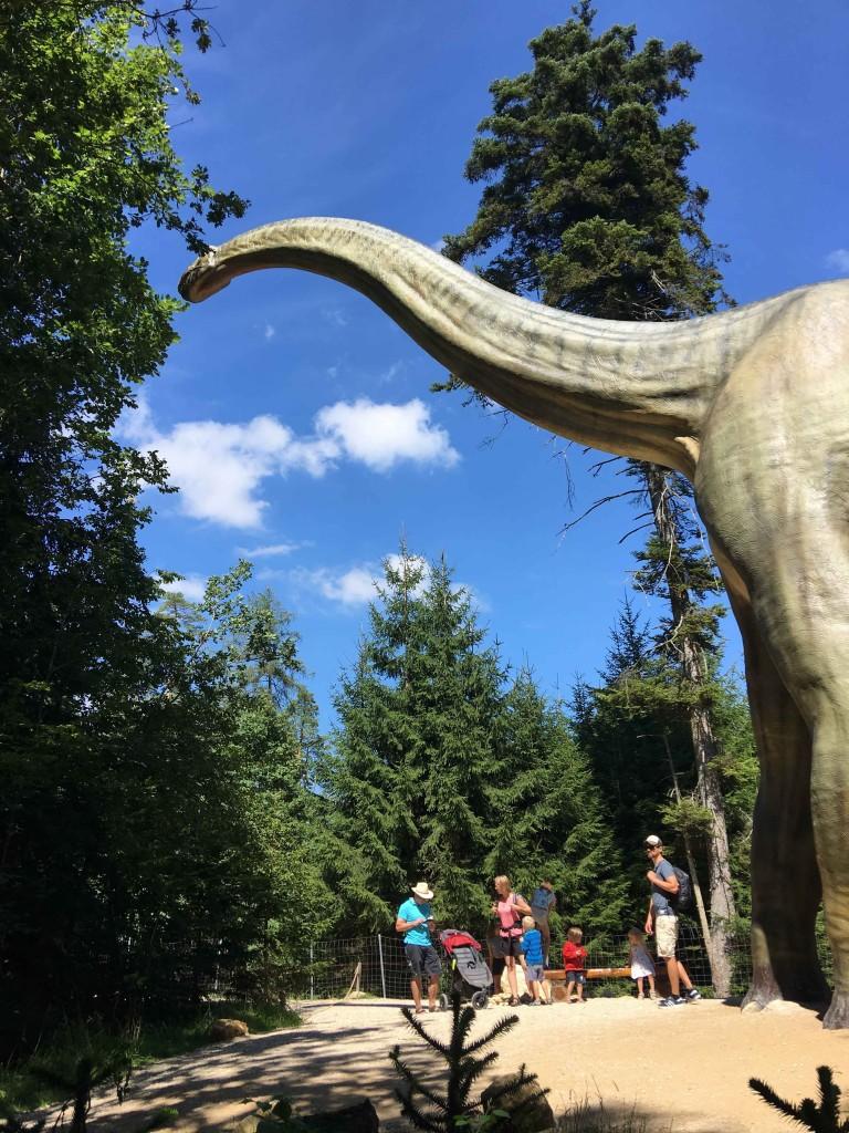 Tijdreis naar de Dinosauriers