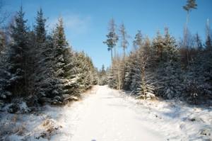 Winterwandelen Duitsland Beieren Altmühltal