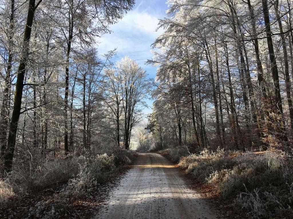 Winterwandelen in Beieren
