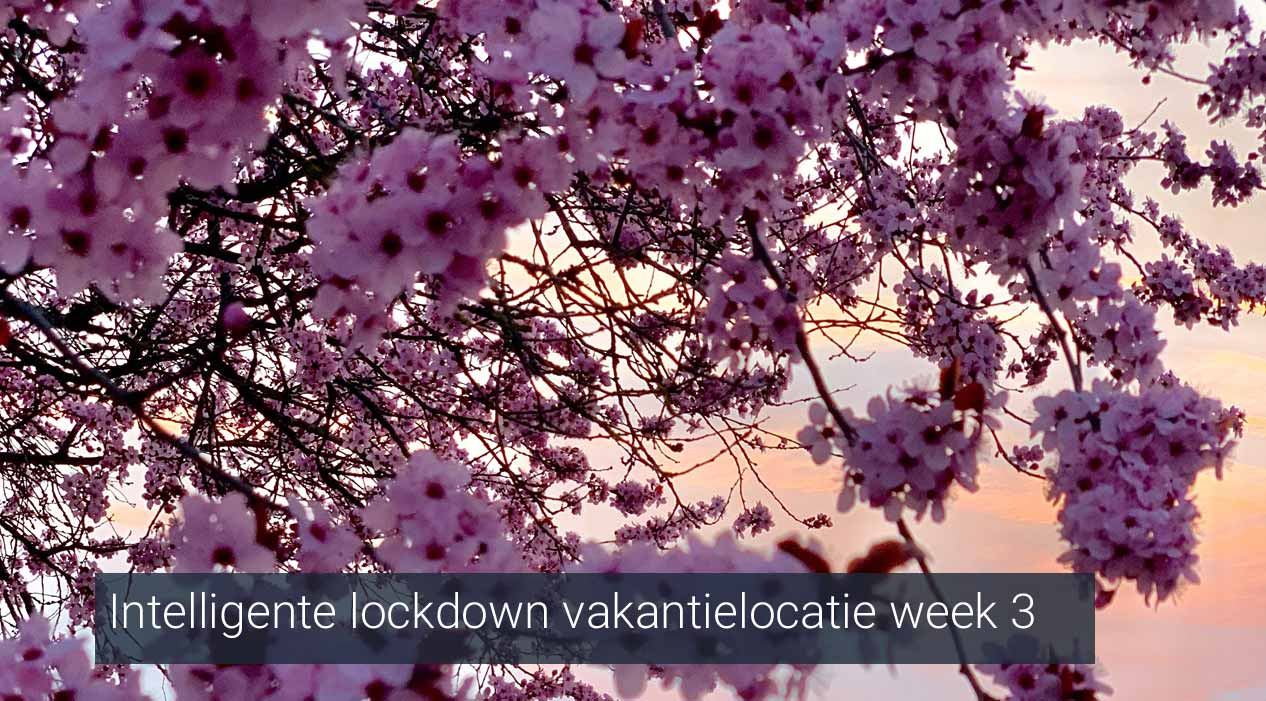 Intelligente lockdown vakantielocatie week 3