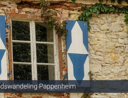 Stadwandeling Pappenheim